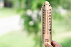 Heatwave Absences